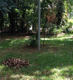 Parque da Matinha