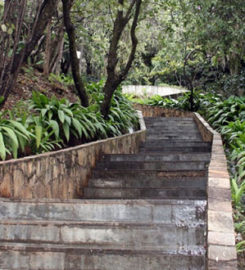 Parque Julien Rien