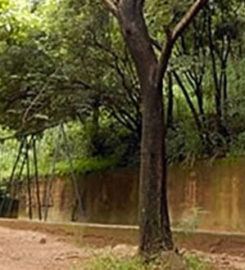 Parque Mata das Borboletas