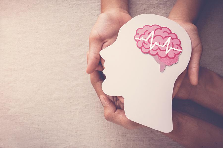 Quatro mãos seguram uma cabeça de papel com um cérebro colorido.